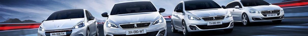 Peugeot-mallisto